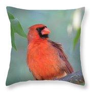 Summer Perch Throw Pillow