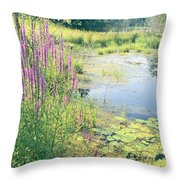 Summer Pond In The Berkshires Throw Pillow