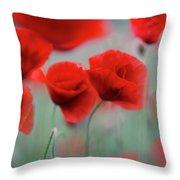 Summer Poppy Meadow 2 Throw Pillow