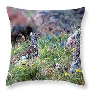 Summer Ptarmigan Throw Pillow