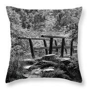 Summer Rain In Blake Dean Throw Pillow