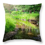 Summer Retreat Throw Pillow