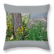Summer River Bank View             July            Indiana Throw Pillow