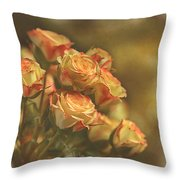 Summer Roses #2 Throw Pillow