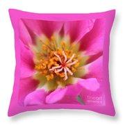 Summer Sass Throw Pillow