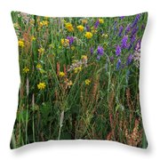 Summer Scents Throw Pillow