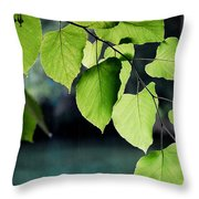 Summer Showers Throw Pillow
