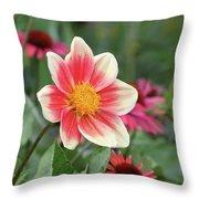 Summer Starlet Throw Pillow