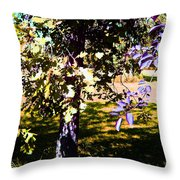 Summer Sulstice Throw Pillow