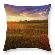 Summer Sunset - Waukesha Wisconsin  Throw Pillow