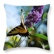 Summer Swallowtail Throw Pillow