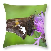 Summer Sweets Throw Pillow
