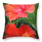 Summer Time Beauties - Hibiscus - Dora Sofia Caputo Throw Pillow