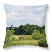 Summer Tractor In Field Corinna Maine Throw Pillow