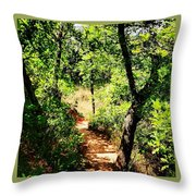 Summer Trail  Throw Pillow