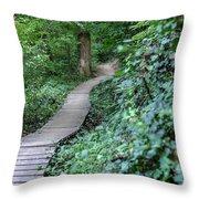 Summer Trail Path Throw Pillow