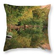 Summer Trees Sunset Throw Pillow