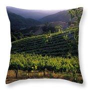 Summer Vineyard Throw Pillow