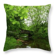 Summer Woodland And The Patapsco River Maryland Throw Pillow