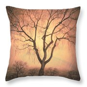 Summerland Light In Winter Throw Pillow