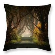 Summer's Almost Gone Throw Pillow