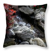 Summersplash Throw Pillow