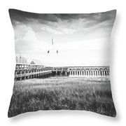 Summertime Storms In Charleston Throw Pillow