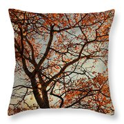 Summing Nature Call  Throw Pillow