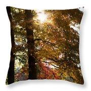 Sun And Autumn Throw Pillow