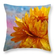 Sun And Rain Throw Pillow
