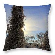 Sun And Snow  Throw Pillow