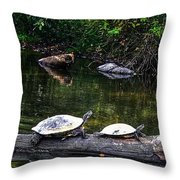Sun Bathing Throw Pillow