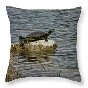 Sun Bathing Stone Throw Pillow