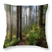 Sun Beams Along Hiking Trail In Washington State Park Throw Pillow
