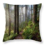 Sun Beams Along Hiking Trail In Washington State Park Throw Pillow