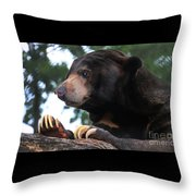 Sun Bear-7859 Throw Pillow