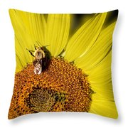 Sun Bee Throw Pillow