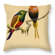 Sun Birds Throw Pillow