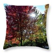 Sun Burst In Autumn Throw Pillow