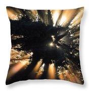 Sun Cast Throw Pillow