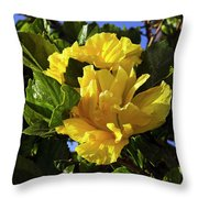 Sun-drenched Yellow Hibiscus Throw Pillow