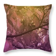Sun Filter Throw Pillow
