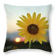 Sun Flower At Sunset Throw Pillow