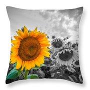Sun Flower B And W Throw Pillow