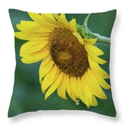 Sun Flower Drop Throw Pillow