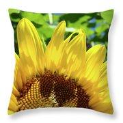 Sun Flower Floral Art Prints Sunflowers Summer Garden Throw Pillow