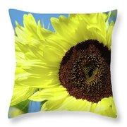 Sun Flower Garden Art Prints Sunflowers Baslee Troutman Throw Pillow