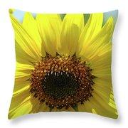 Sun Flower Glow Art Print Summer Sunflowers Baslee Troutman Throw Pillow