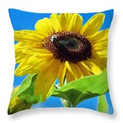 Sun Flower - Id 16235-142741-1520 Throw Pillow