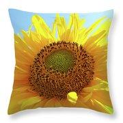 Sun Flowers Art Sunflower Giclee Prints Baslee Troutman  Throw Pillow